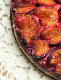 Plum Tree Plum Recipes Plum Glut Fresh