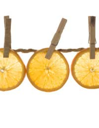 How Do I Dry Citrus Fruit?