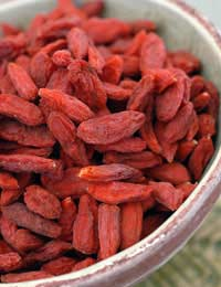 Growing Goji Berries Goji Berries How To
