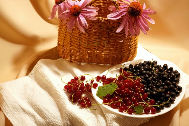 blackcurrants and redcurrants on a plate
