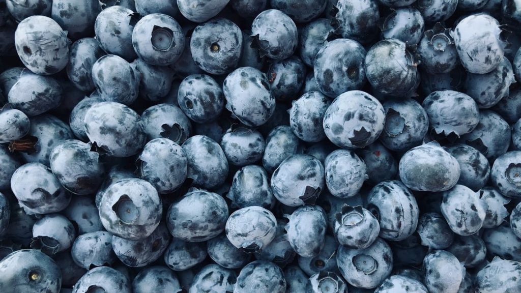a glut of blueberries in a large pile