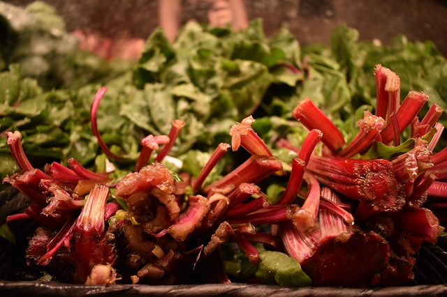 A Rhubarb glut waiting to be used up